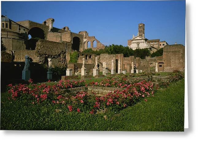 The Garden Of The Vestal Virgins Greeting Card by Taylor S. Kennedy