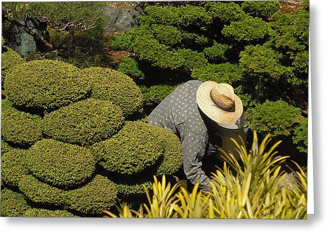 The Gardener Greeting Card by Richard Reeve