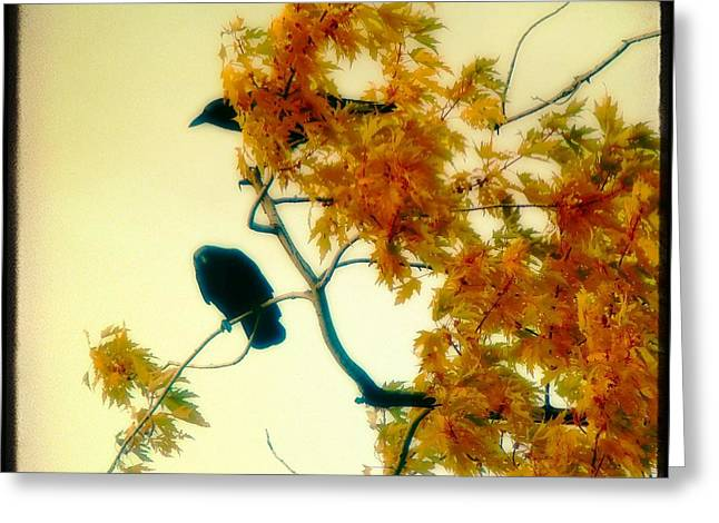 The Glow Of Autumn Greeting Card by Gothicrow Images