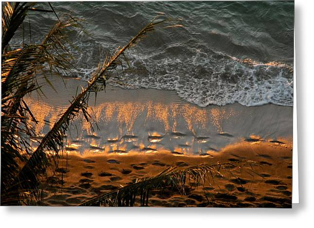The Golden Moment IIi Greeting Card by Kirsten Giving