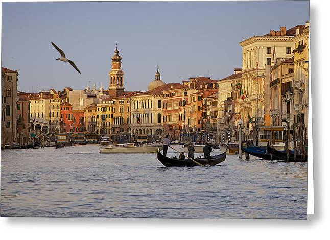 The Grand Canal Greeting Card by Daniel Sands
