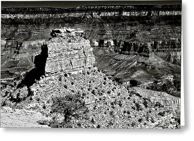 The Grand Canyon Bw Greeting Card by Bob and Nadine Johnston