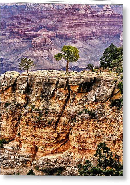 The Grand Canyon Iv Greeting Card