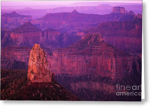 The Grand Canyon North Rim Greeting Card by Bob Christopher