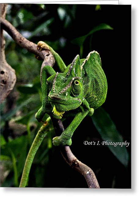 The Green Dude Greeting Card by Dorothy Hilde