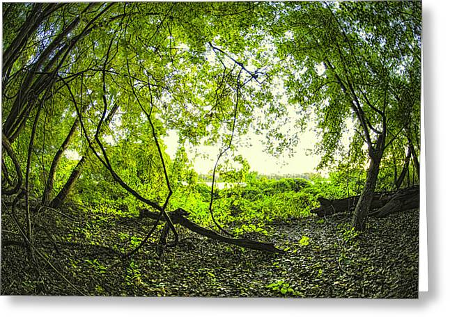 The Green Knoll Greeting Card by Kimberleigh Ladd