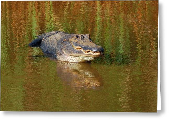 The Grin Greeting Card by Kathy Gibbons