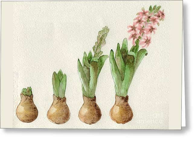 Greeting Card featuring the painting The Growth Of A Hyacinth by Annemeet Hasidi- van der Leij