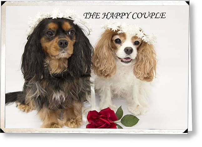 The Happy Couple Greeting Card by Daphne Sampson