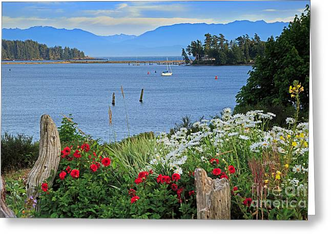 The Harbor At Sooke Greeting Card by Louise Heusinkveld
