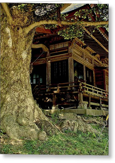 Greeting Card featuring the photograph The Hidden Shrine 2 by Tim Ernst