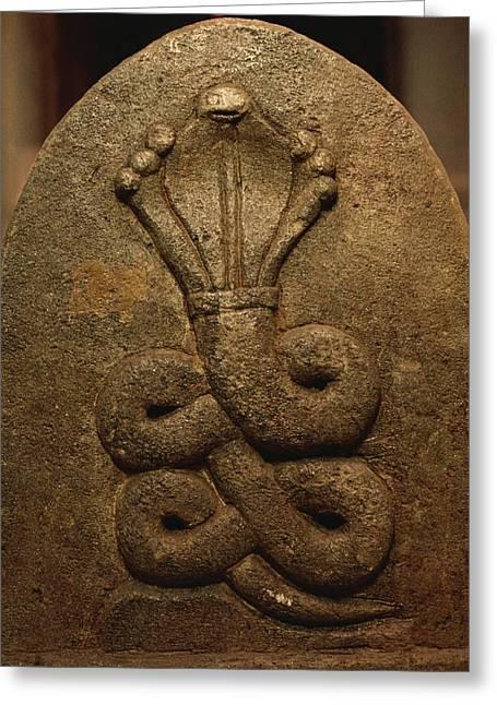 The Image Of A King Cobra Carved Greeting Card by Mattias Klum