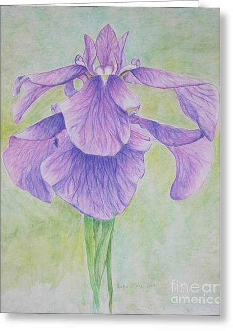 The Irises Greeting Card by Heather Perez