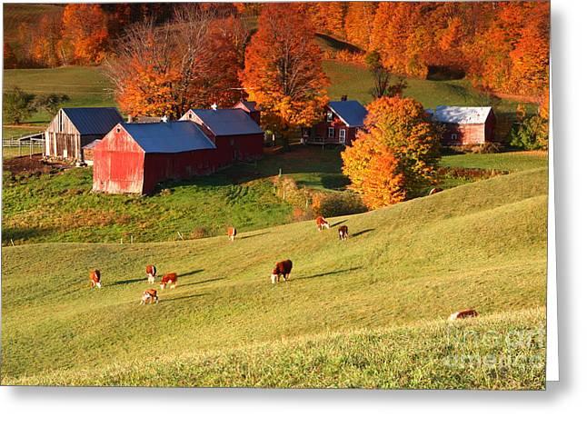 The Jenne Farm Greeting Card by Butch Lombardi
