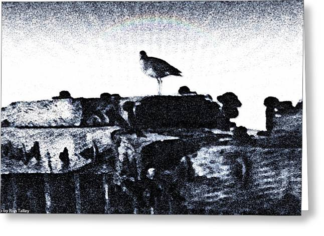 The Jetty Bird Greeting Card by Ronald Talley