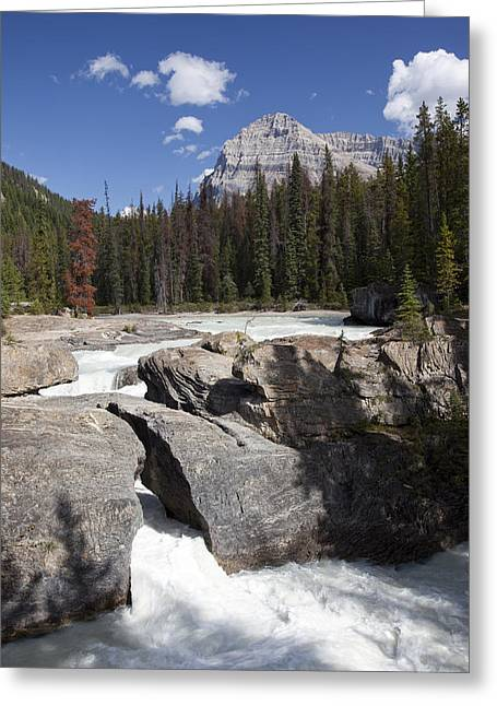 The Kicking Horse River Winds Greeting Card by Taylor S. Kennedy