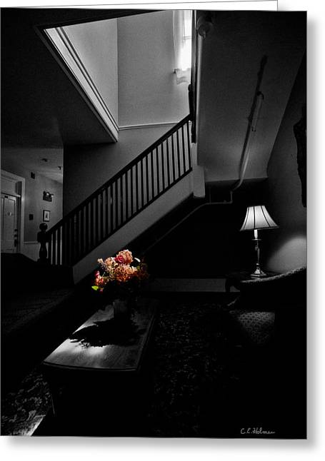 The Landing Greeting Card by Christopher Holmes