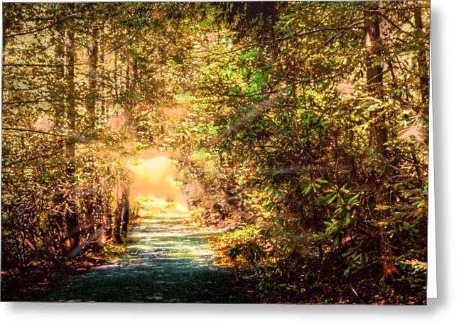 The Light Greeting Card by Barry Jones
