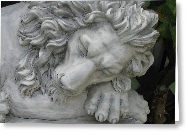 The Lion Sleeps Tonite Greeting Card