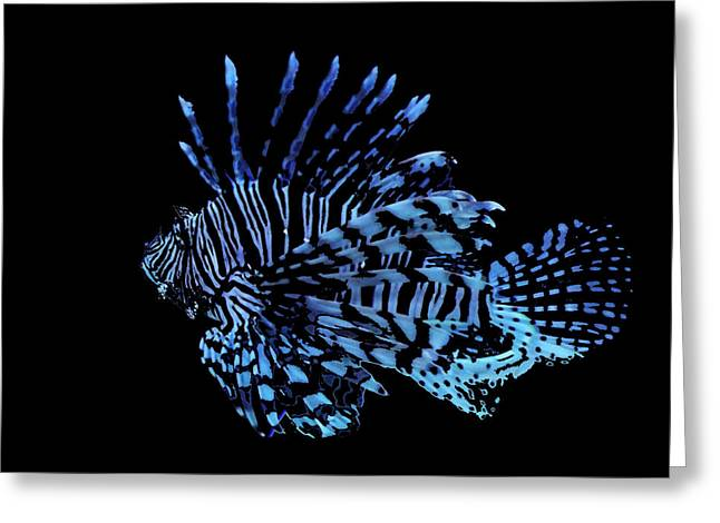 The Lionfish 3 Greeting Card by Robin Cox