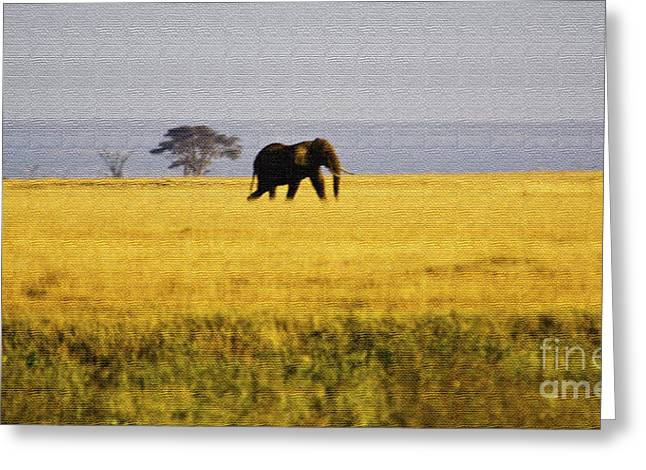 The Lone Elephant Greeting Card by Pravine Chester