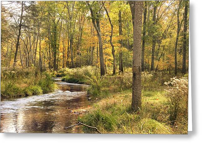 The Lost Creek Greeting Card by Cindy Rubin