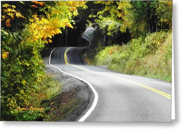 Greeting Card featuring the photograph The Low Road by Sadie Reneau