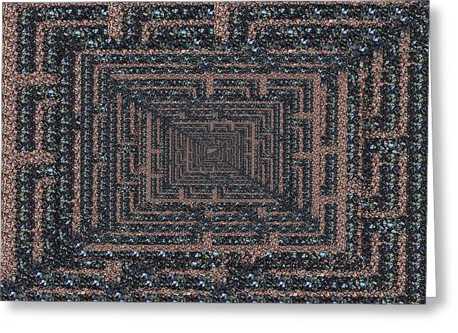The Maze Greeting Card by Tim Allen
