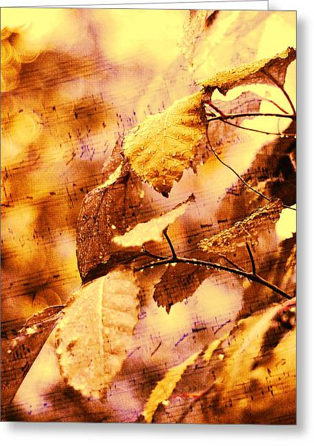 The Melody Of The Golden Rain Greeting Card by Jenny Rainbow