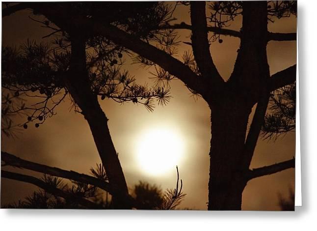 The Moon Rises Above Nanko Lake Greeting Card by Michael S. Yamashita