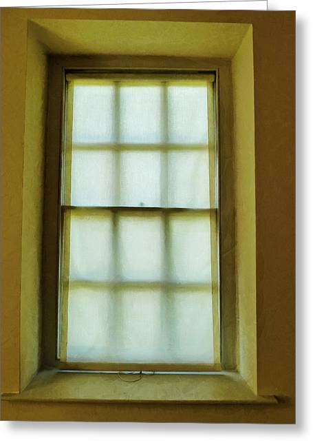 The Mustard Window Greeting Card by Steve Taylor