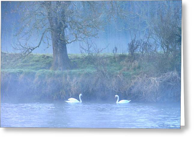 The Mystical River Greeting Card