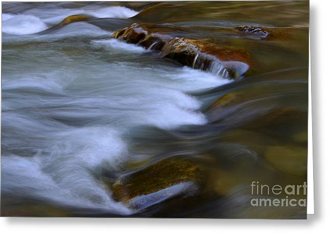 The Narrows Virgin River Zion 7 Greeting Card by Bob Christopher