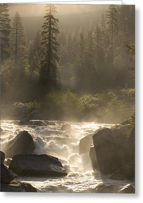 The North Fork Of The Stanislaus River Greeting Card by Phil Schermeister