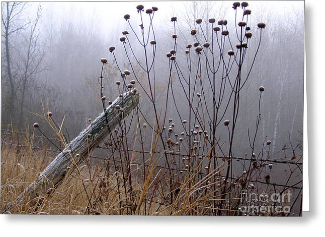 The Old Fence - Blue Misty Morning Greeting Card