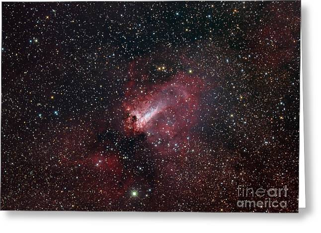 The Omega Nebula Greeting Card by Filipe Alves