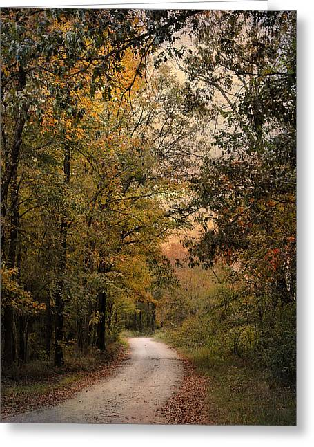 The Path Less Traveled 2 Greeting Card by Jai Johnson