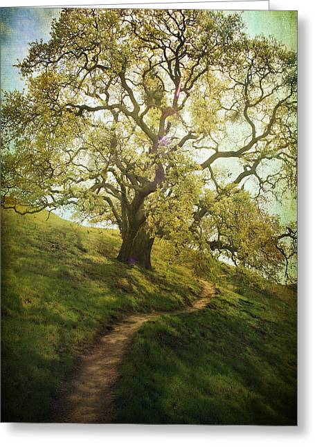 The Path To Brighter Days Greeting Card by Laurie Search