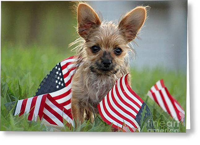 The Patriot II Greeting Card by Billie-Jo Miller