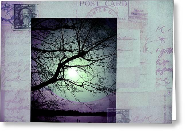 The Postcard IIi Greeting Card by Ann Powell