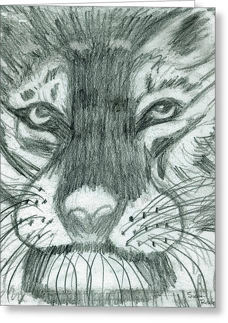 The Puma Greeting Card by Susan Risse