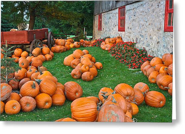 Greeting Card featuring the photograph The Pumpkin Farm by Nick Mares
