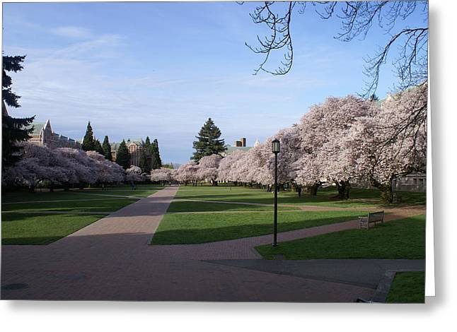 Greeting Card featuring the photograph The Quad by Jerry Cahill