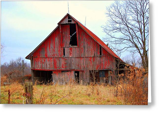 The Red Barn Greeting Card by Robin Pross