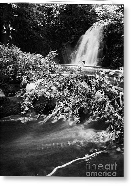the river at the Gleno or Glenoe Waterfall beauty spot county antrim Greeting Card