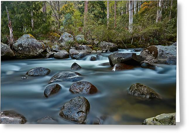 The River Wild Greeting Card by Mark Lucey