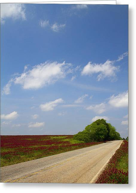 The Road Ahead Is Lined In Red Greeting Card by Kathy Clark