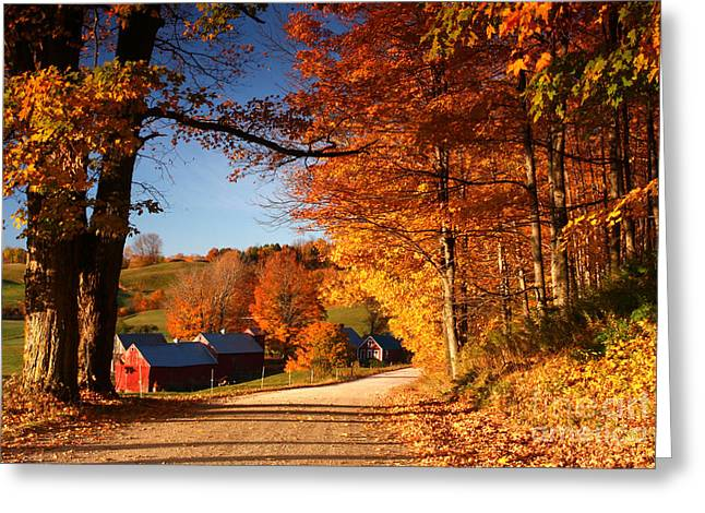 The Road To The Jenne Farm Greeting Card by Butch Lombardi