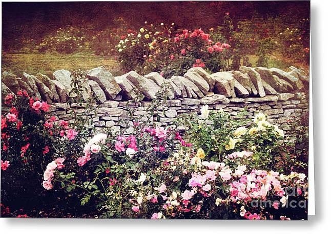 The Rose Garden Greeting Card by Stephanie Frey