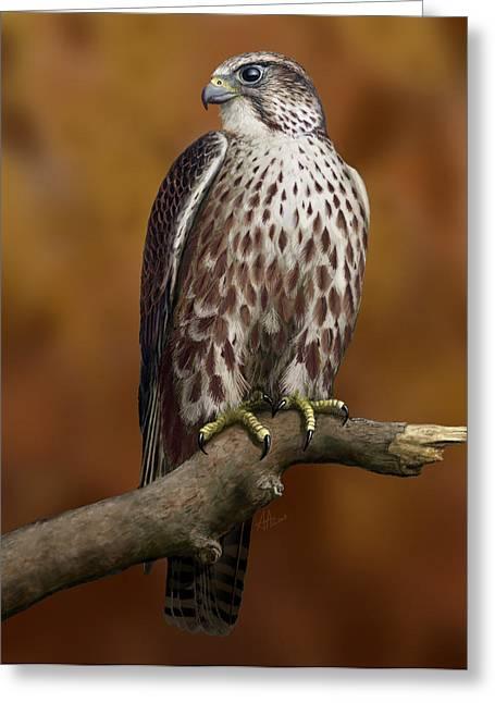 The Saker Falcon Greeting Card by Deak Attila